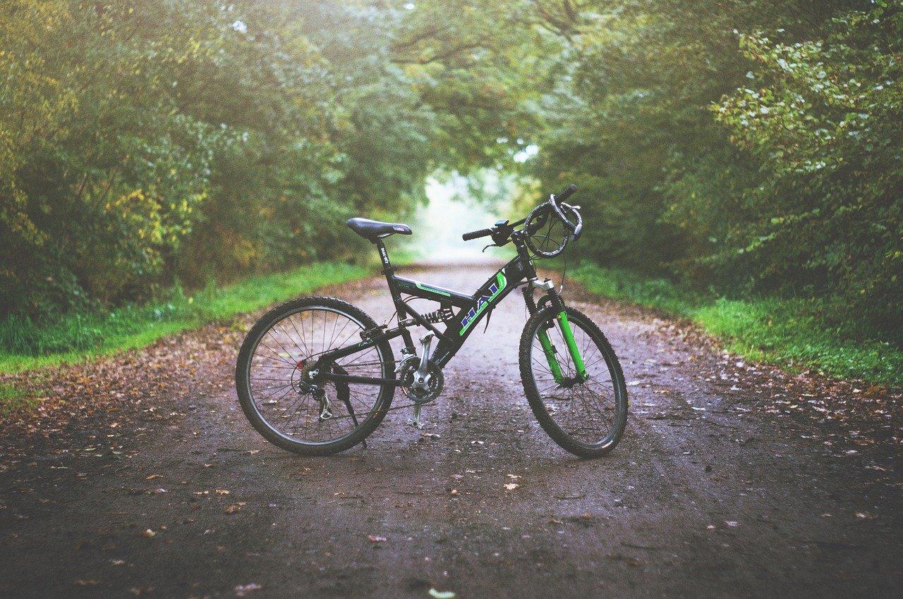 mountain bike, dirt road, wet
